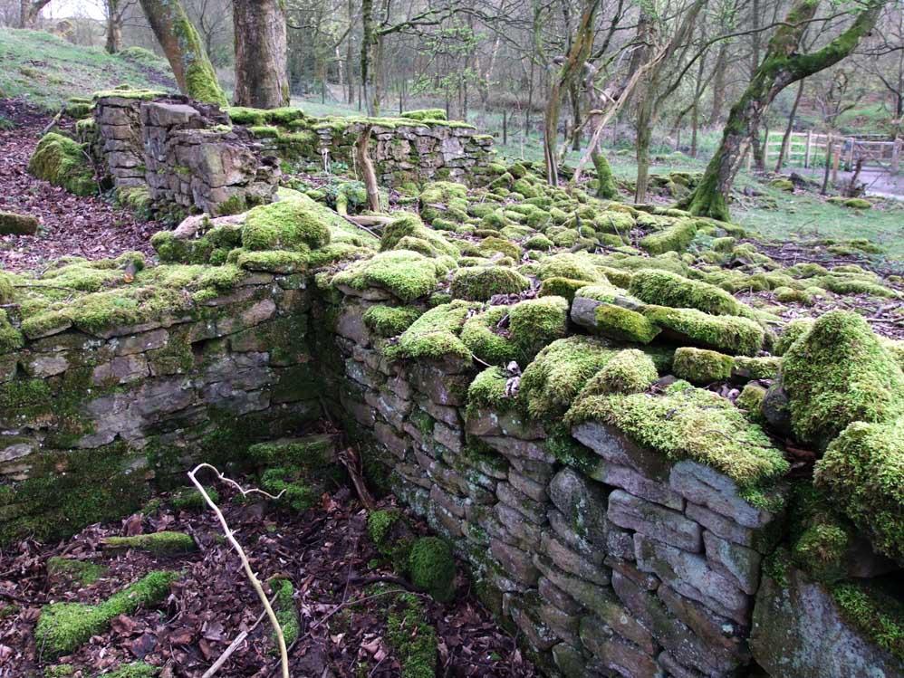 ruins in the woods. Black Bedroom Furniture Sets. Home Design Ideas